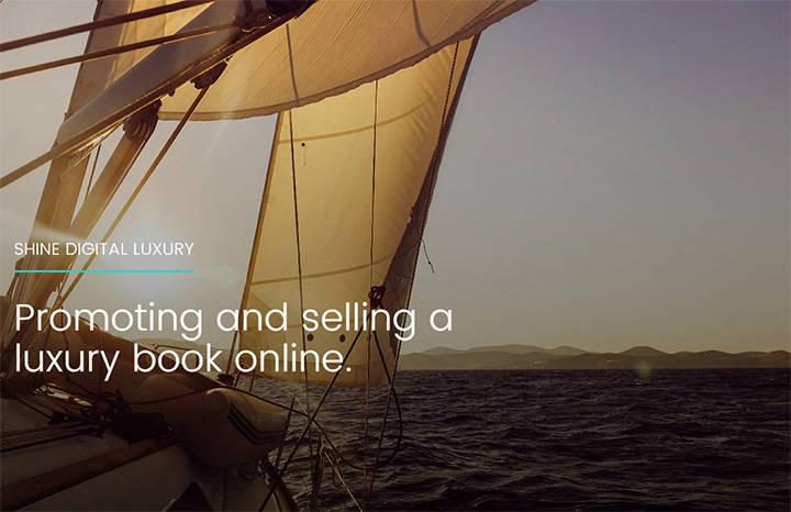 mOOnshot-digital-marketing-agency-Singapore-case-study-Shine-Digital-Luxury